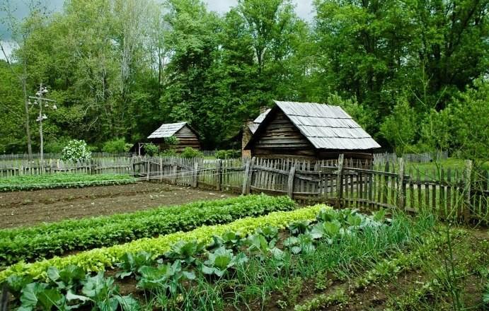 Дневник садовода-огородника на 2019 год содержит объем работ на каждый месяц»