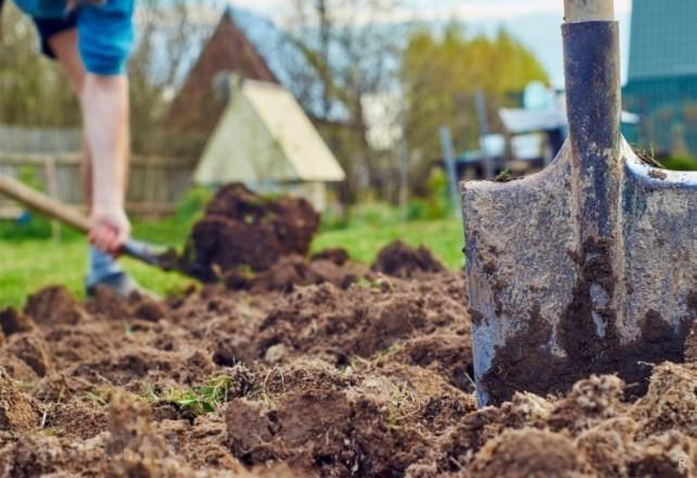 Нужно ли перекапывать землю осенью в огороде, чтобы получить в будущем отличный урожай