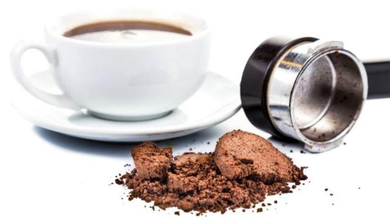 Кофейная гуща является прекрасным органическим удобрением
