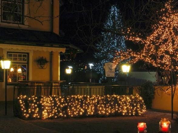 Уличные световые деревья от компании Спец Свет Снаб поражают  своей красотой