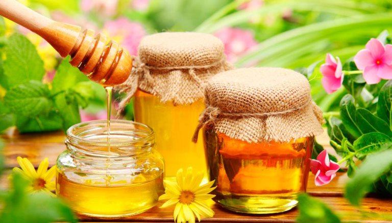 Полезные свойства меда, которые помогают организму человека в борьбе с бактериями