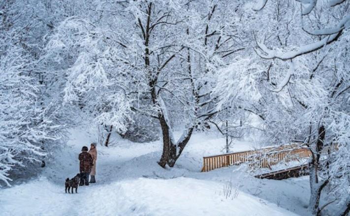 Зима 2021 года угрожает всему человечеству резкими перепадами температуры и осадками