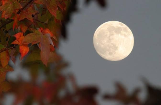 Какая Луна сегодня 30 сентября 2021 года